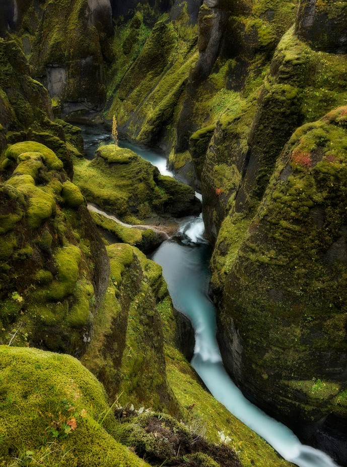 Throughout by kasparsdzenis - Streams In Nature Photo Contest
