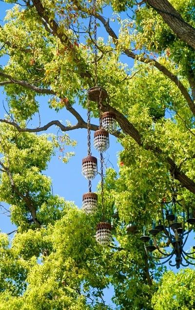 Chandelier Tree Study 2