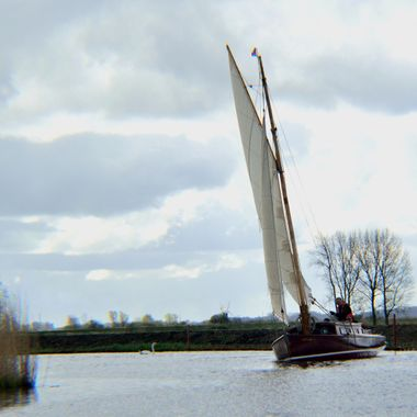 Yacht sailing on the River Ant in the Norfolk Broads, UK.