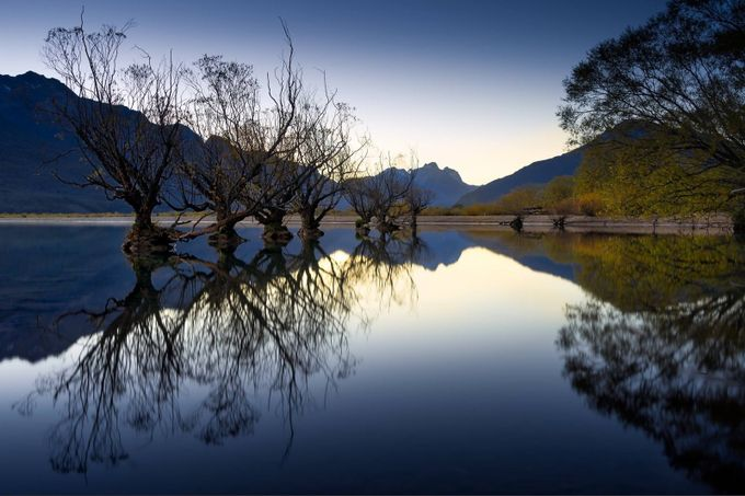 Glenorchy Willows by SarahCaldwell - Zen Photo Contest