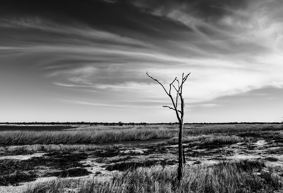 Dry season in the Australian outback