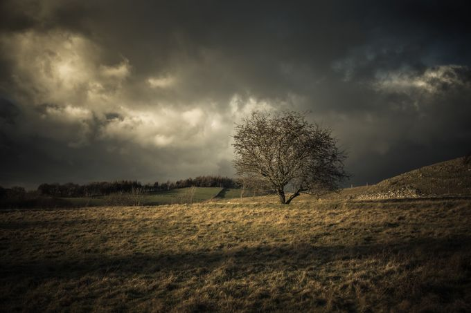 Beacon in the storm by CPF_Photography - Rule Of Thirds In Nature Photo Contest