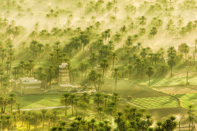 Once Upon a Time by Fahad08 - Palm Trees Photo Contest