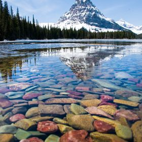 This is the view across Two Medicine Lake with Sinopah Mountain in the background. The water was so clear that it made visible the colorful subme...