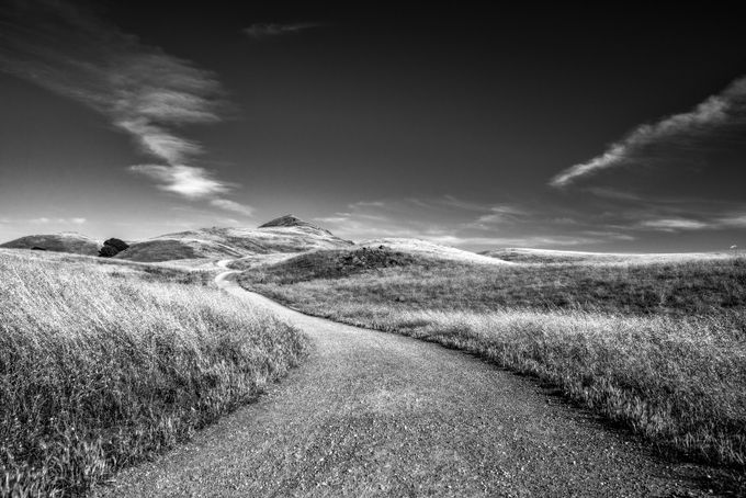Road to Mission Peak by markcote - Country Roads Photo Contest