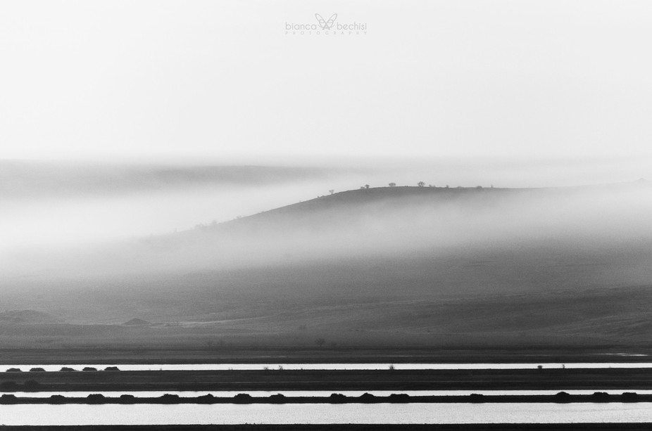 Beautiful foggy atmosphere in a black and white sunrise
