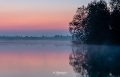 Silence Of Twilight