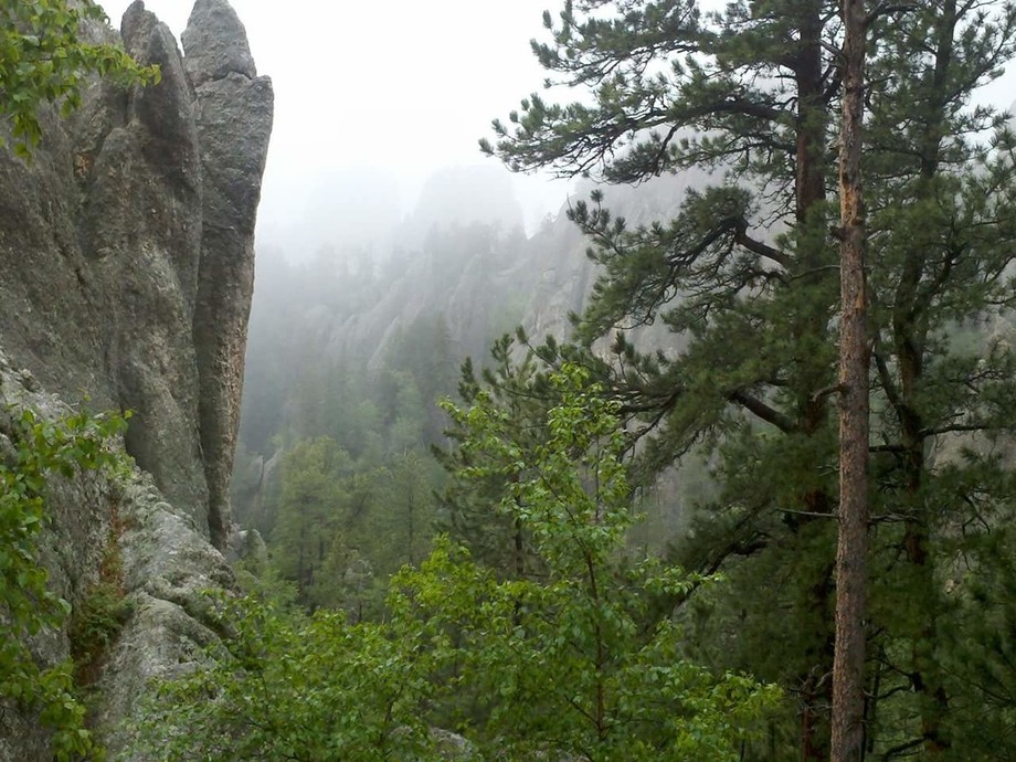An early morning drive through the Black Hills produced this Awsome photo.
