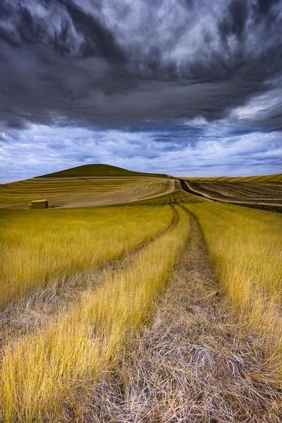 Farms roads