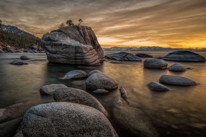 Bonsai Rock! by rachelray - Rule Of Thirds In Nature Photo Contest