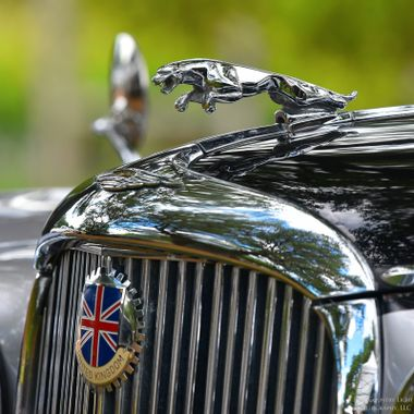 Leaper and Union Jack emblems adorning the hood of the 1958 Jaguar Mark VIII