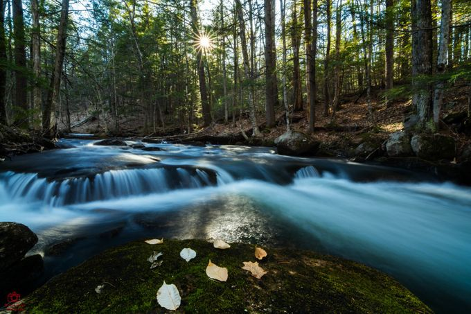 Spring Brook by marlonmullon - Flares 101 Photo Contest