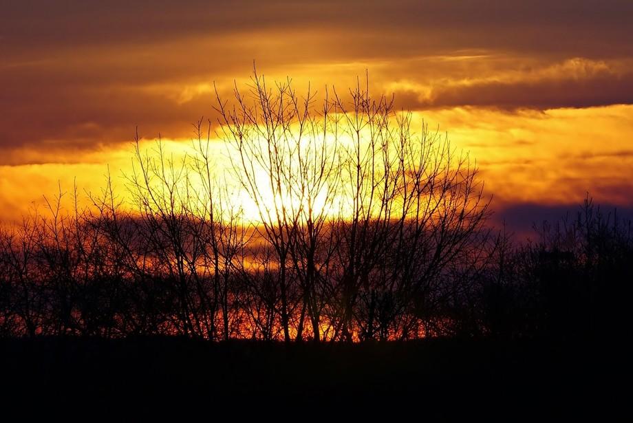 Early spring sunrise