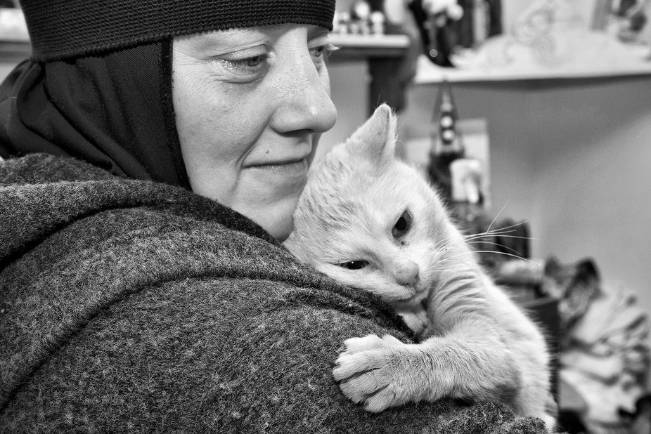 Minsk. Monastery animal shelter. Belarus. 2015