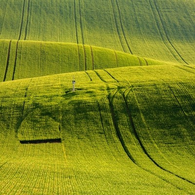 ...green waves in the landscape...