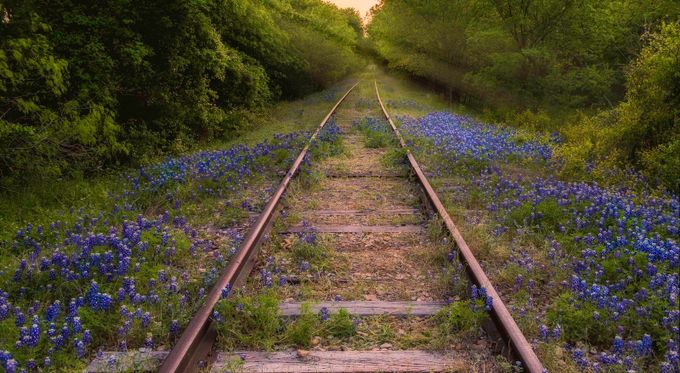 Perspective by trascoe - Empty Railways Photo Contest