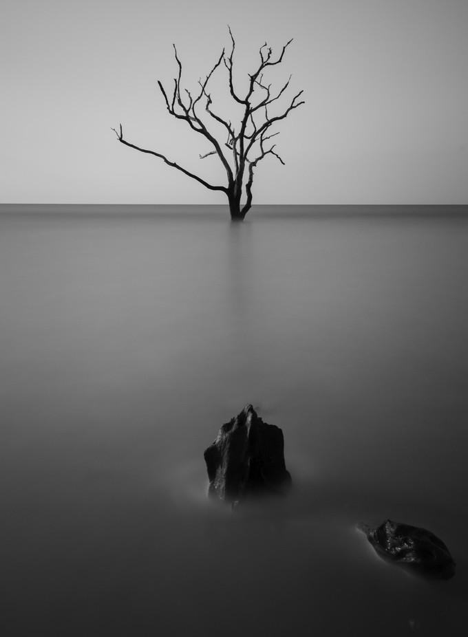 Epiphany by LarryGreene - Composing with Negative Space Photo Contest