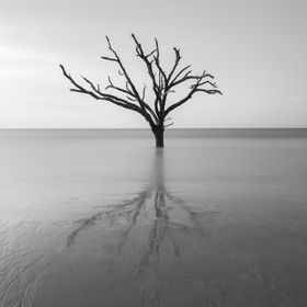 A long exposure shot at Botany Bay, SC.