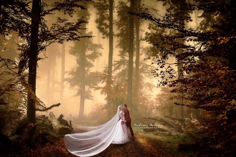 Wedding Dream II
