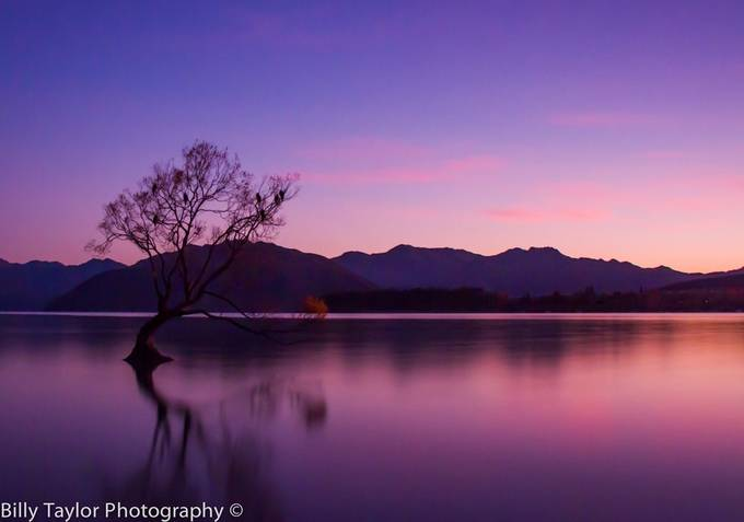 A Lonely Morning. by billytaylorphotography - Shades Of Purple Project