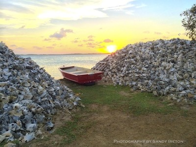 Conch Shell Hills at Sunset