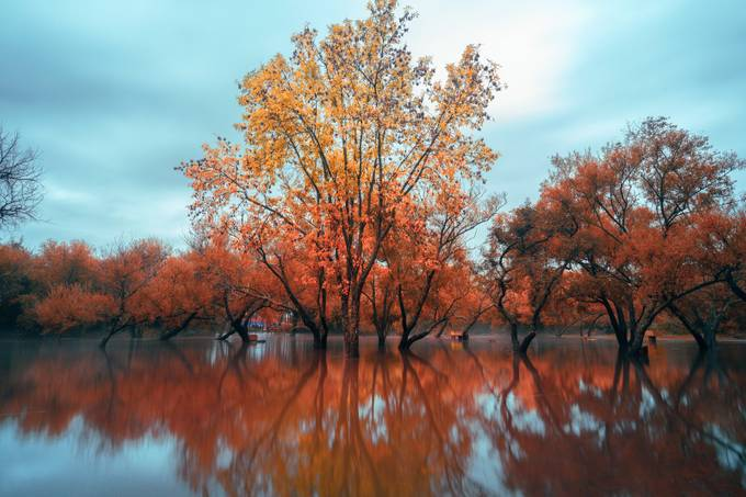 autumn flood by diegoweisz - Fall 2017 Photo Contest