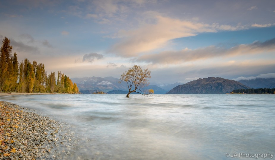 A long exposure photo of Lonely Tree in Wanaka, New Zealand