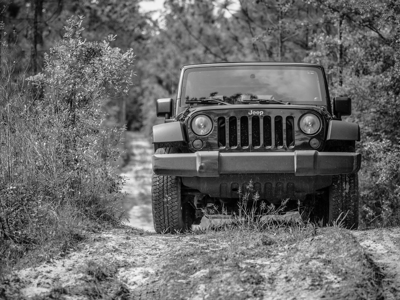 Jeep on a dirt road