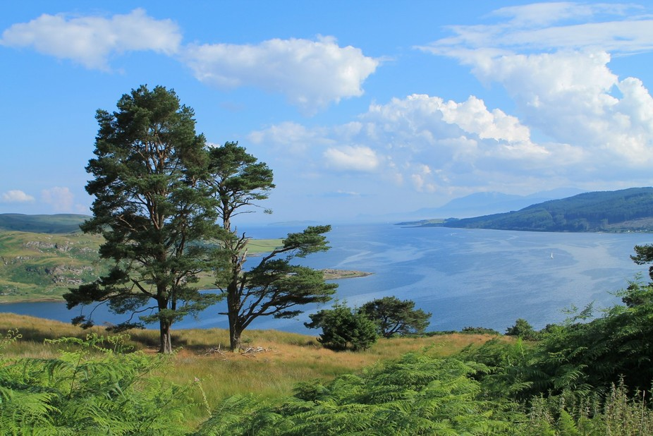 One of the best views to get while walking across the Cowal Peninsula, looking out down the Kyles...