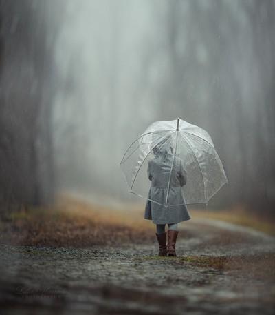 Into The Rain...