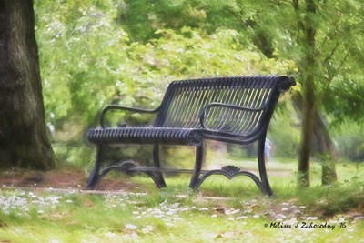 One of William Land Park Benches...
