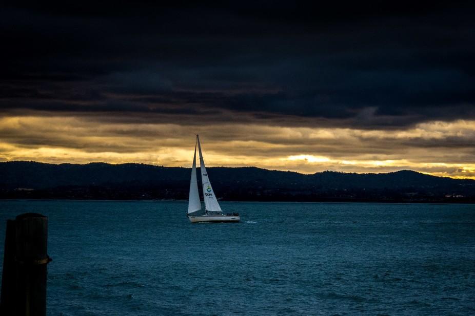 Yacht, Auckland Harbour