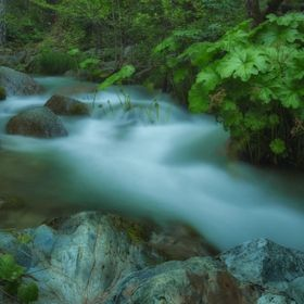 A view of Boulder Creek in the Whiskeytown National Recreation Area in Northern California.  To view more of my photos go to www.michelejamesphot...