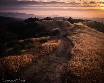 Hillside Sunset-1