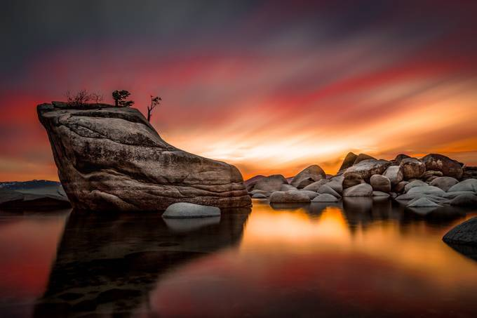 Bonsai Rock Sunset by floodthesensor