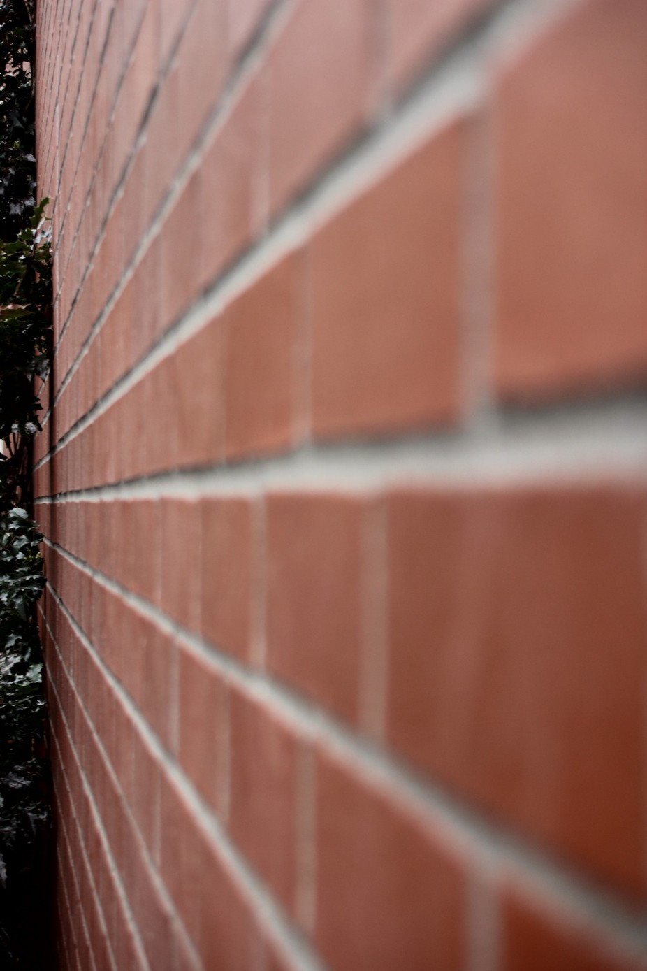 This is a photo of a brick wall that is by my school.