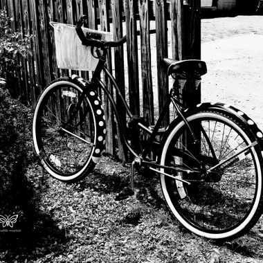Bicycle MONO