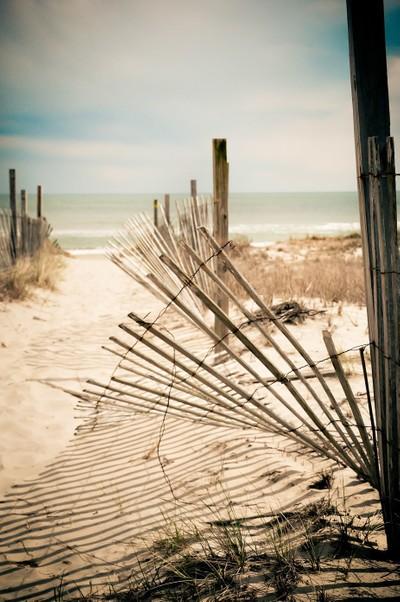 Worn Path to the Beach