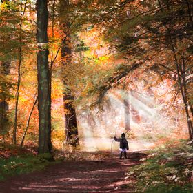 Child on a magical quest in the Autumn woods. The woods were photographed in Massachusetts and the child was photographed in Winter in Pennsylvan...
