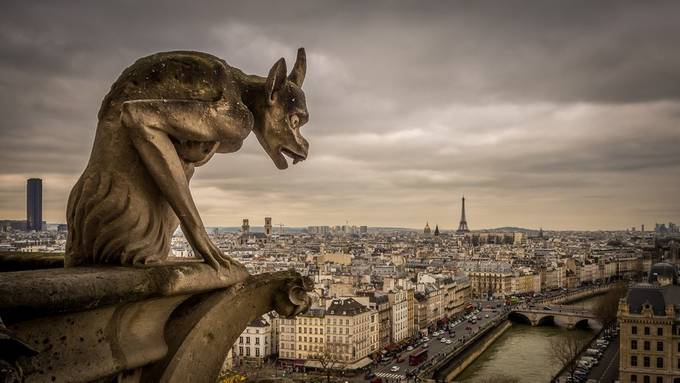 Chimeras of the Notre Dame  by DenizPhoto - Paris Photo Contest