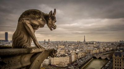 Chimeras of the Notre Dame