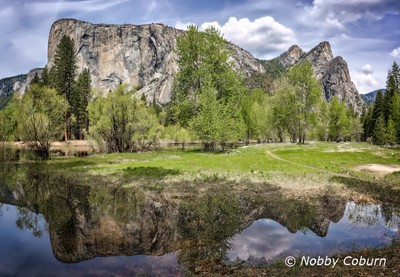 Fine Yosemite day in the Spring.