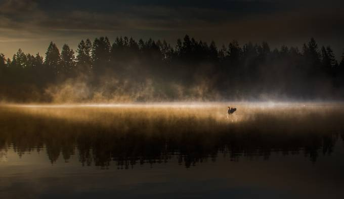 Sole Purpose by jeanmarieshelton - The Zen Moment Photo Contest