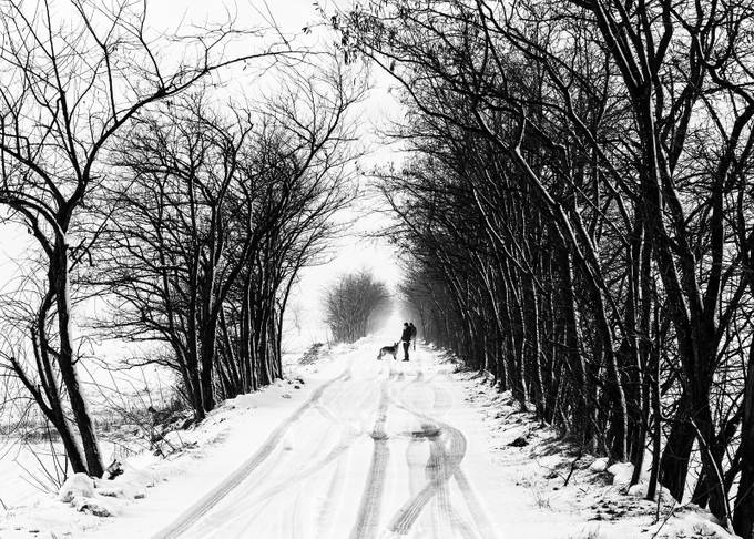 Country road by livioferrari - People In Large Areas Photo Contest