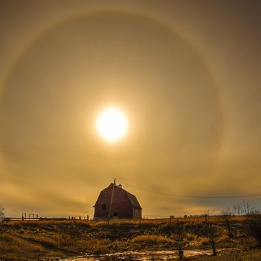 The Big Sundog