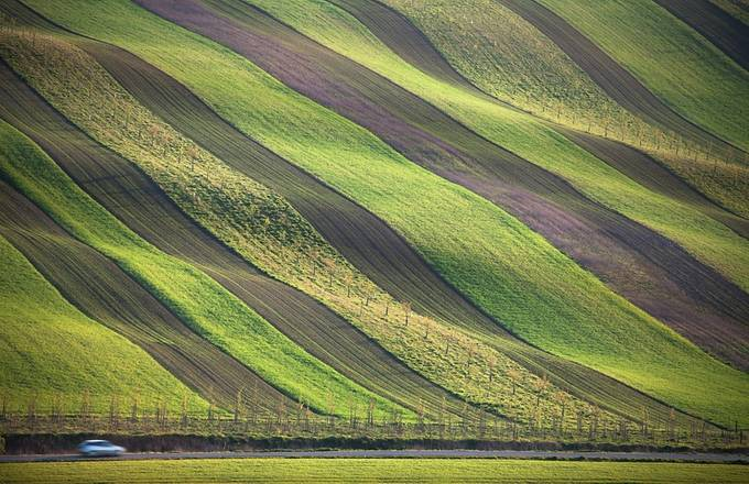 Spring fields stripes by petersvoboda - Composing with Diagonals Photo Contest