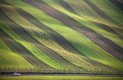 Spring fields stripes