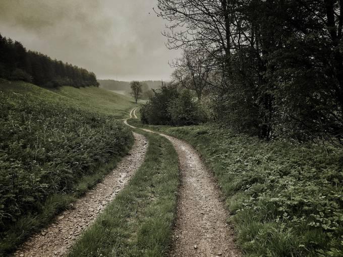 The Trail by stevethomson - Freshmen 2016 Photo Contest Vol 2