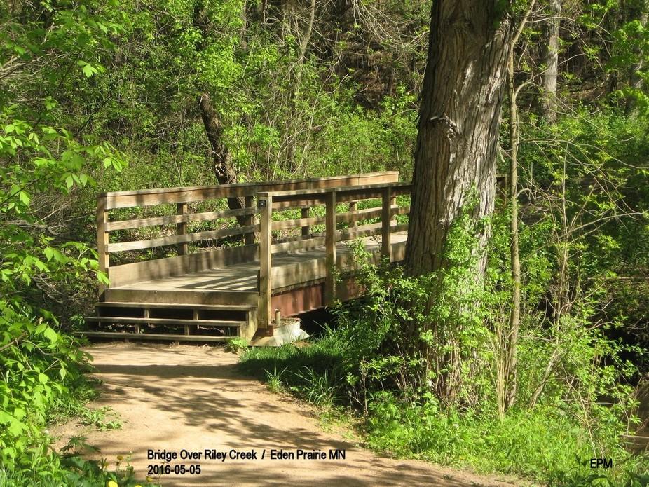 Bridge over Riley Creek to begin the hiking trail. Eden Prairie MN.