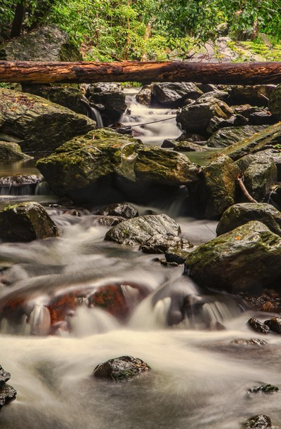 Stoney Creek Cascades
